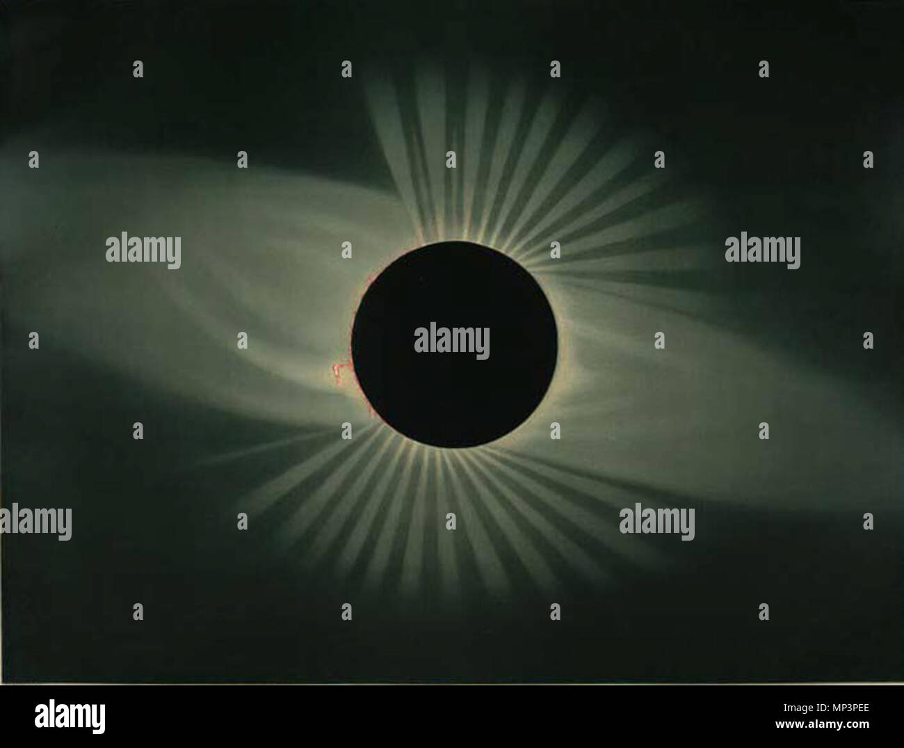 Total eclipse of the sun  Observed July 29, 1878, at Creston