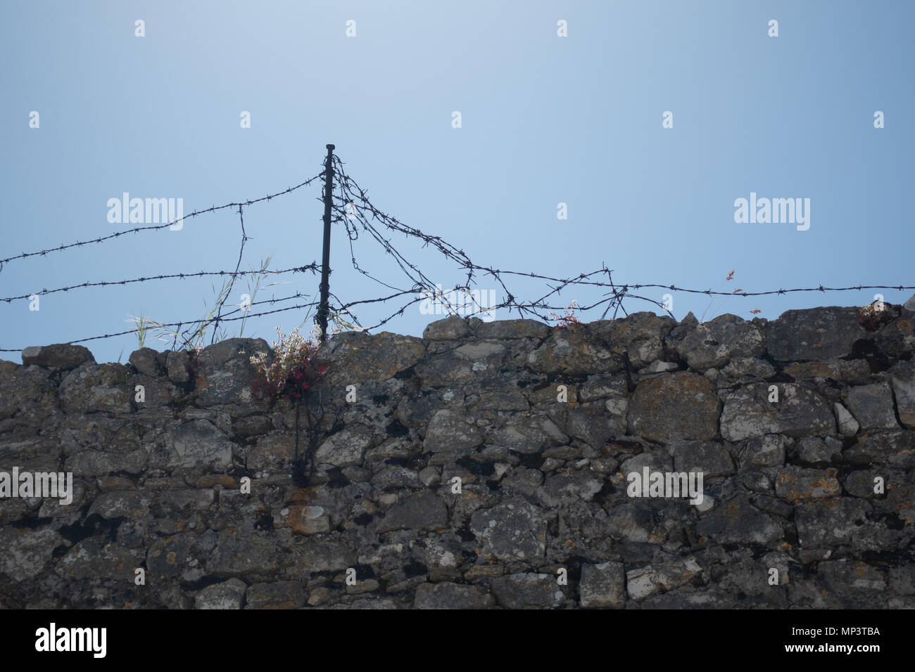 Stone wall with barbed wire against blue sky, wire torn and damaged - Stock Image