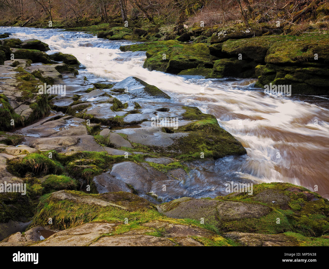 Lines of the River Wharfe at The Strid, near Bolton Abbey, Yorkshire Dales - Stock Image