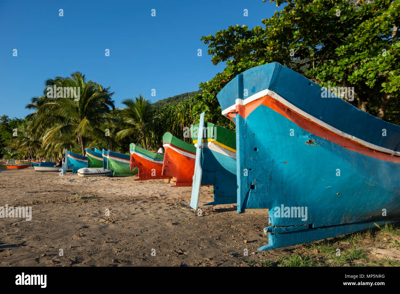 Traditional wooden canoes from Ilhabela, SE Brazil - Stock Image