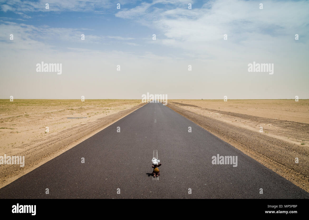 Cute soft toy sitting in middle of empty desert road with diminishing perspective, Mauritania, Africa - Stock Image