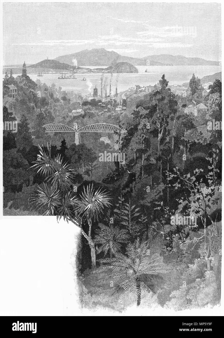 Engraving of Auckland Harbour and Mount Rangitoto viewed from Cemetery Gully, New Zealand. From the Picturesque Atlas of Australasia Vol 3, 1886 - Stock Image