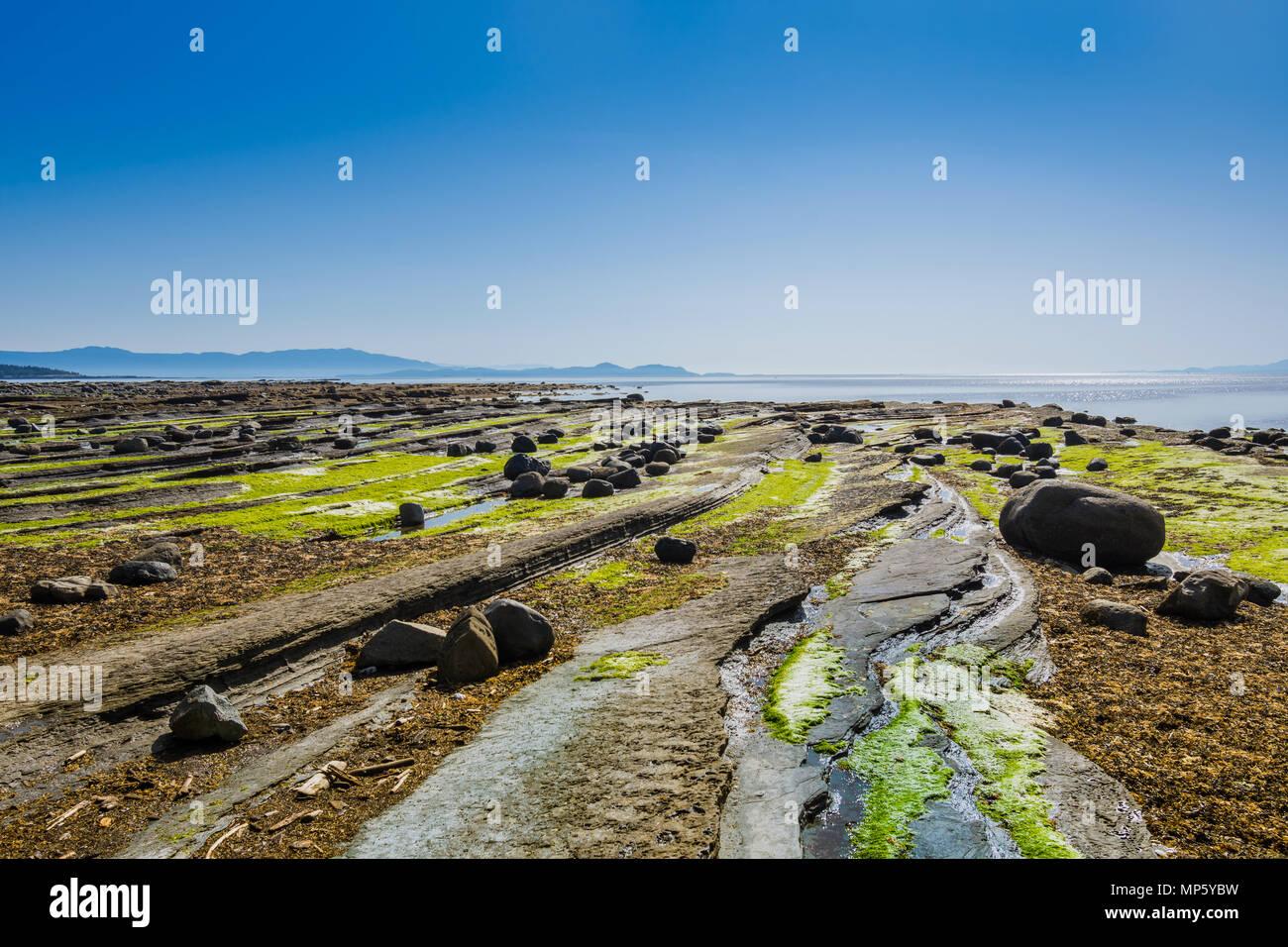 Rocky shore, Sandpiper beach, Hornby Island, BC, Canada. - Stock Image