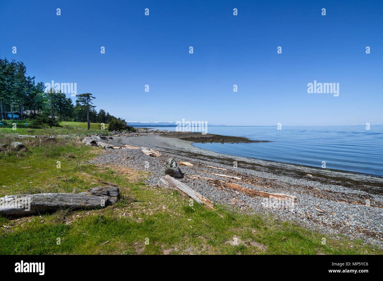 Shoreline, Hornby Island, BC, Canada. - Stock Image