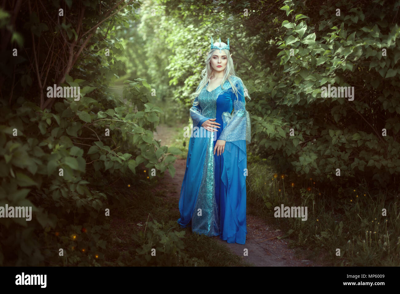 Beautiful elf woman in a blue dress standing in the fairy forest. - Stock Image