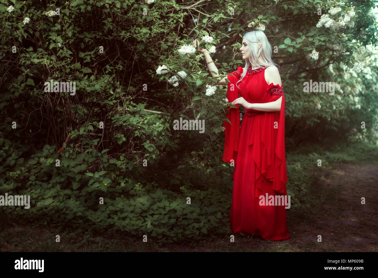 Young elf woman in a red dress in a fairy forest. - Stock Image