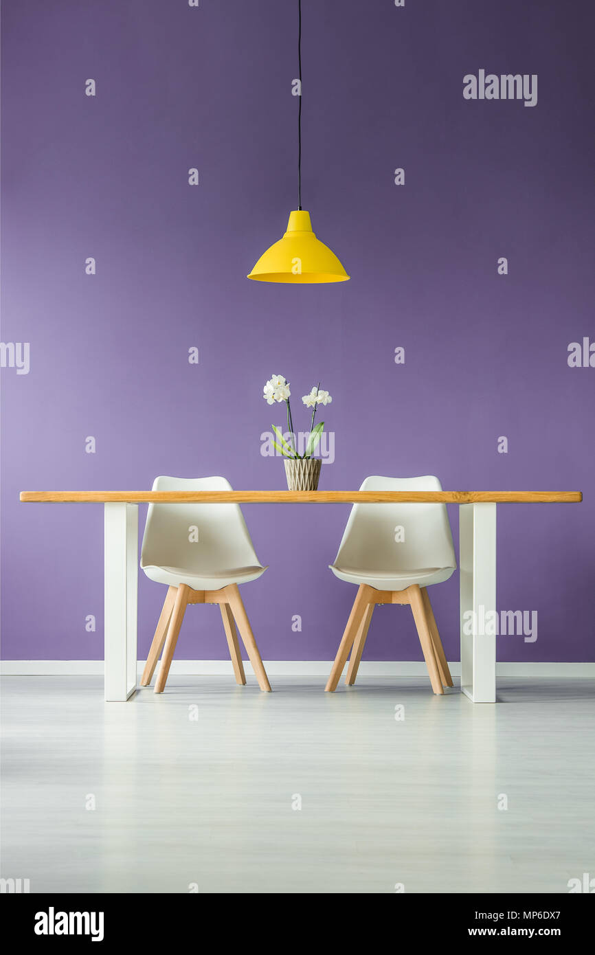 Symmetric, modern, minimal style interior with a front view of two white chairs behind a table with a flower in a pot and a yellow lamp against a purp - Stock Image