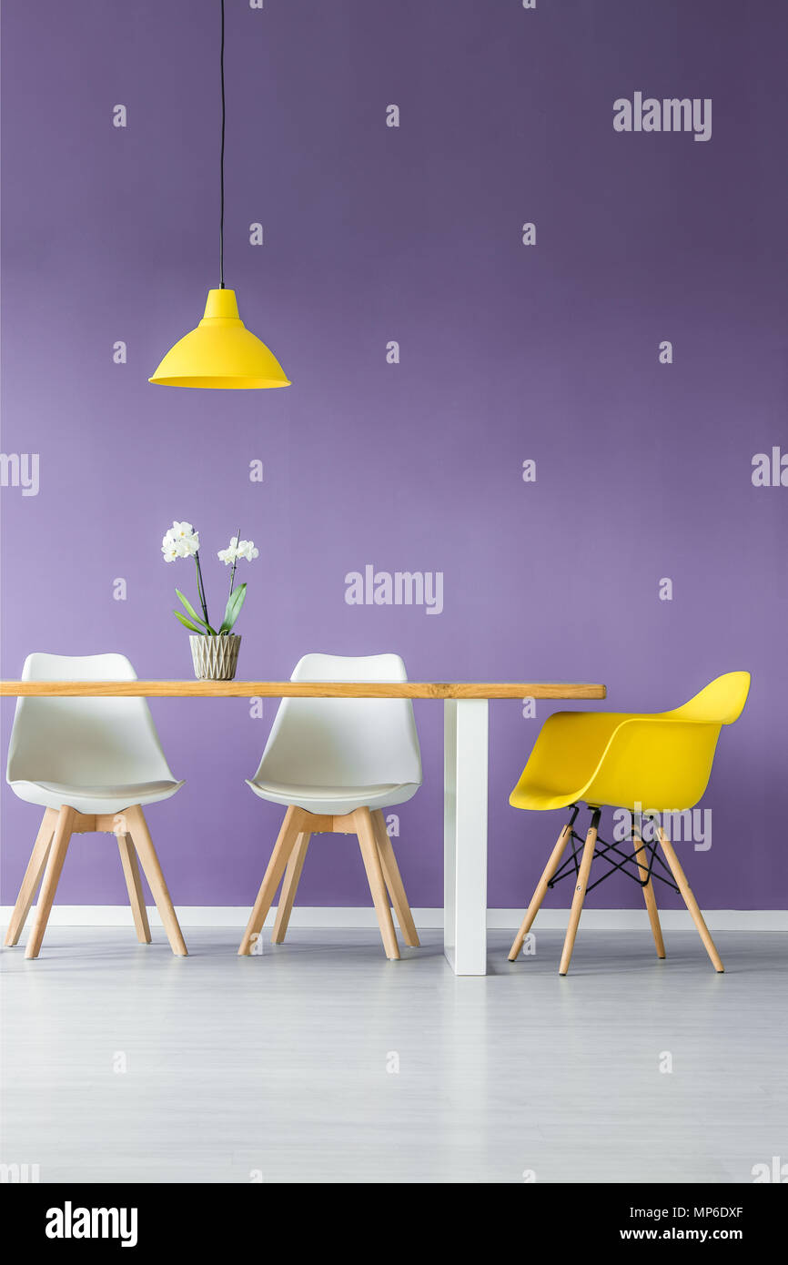White floor and purple wall living room interior with simple, contrasting color chairs, table with a plant in a pot and a hanging yellow lamp - Stock Image