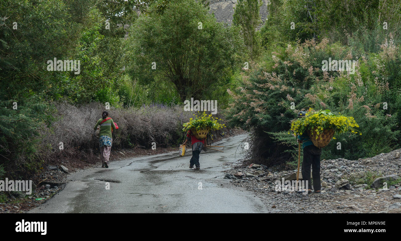 Tibetan people walking on rural road in Ladakh, India. Ladakh is the highest plateau in state of Jammu & Kashmir with much of it being over 3000m. Stock Photo