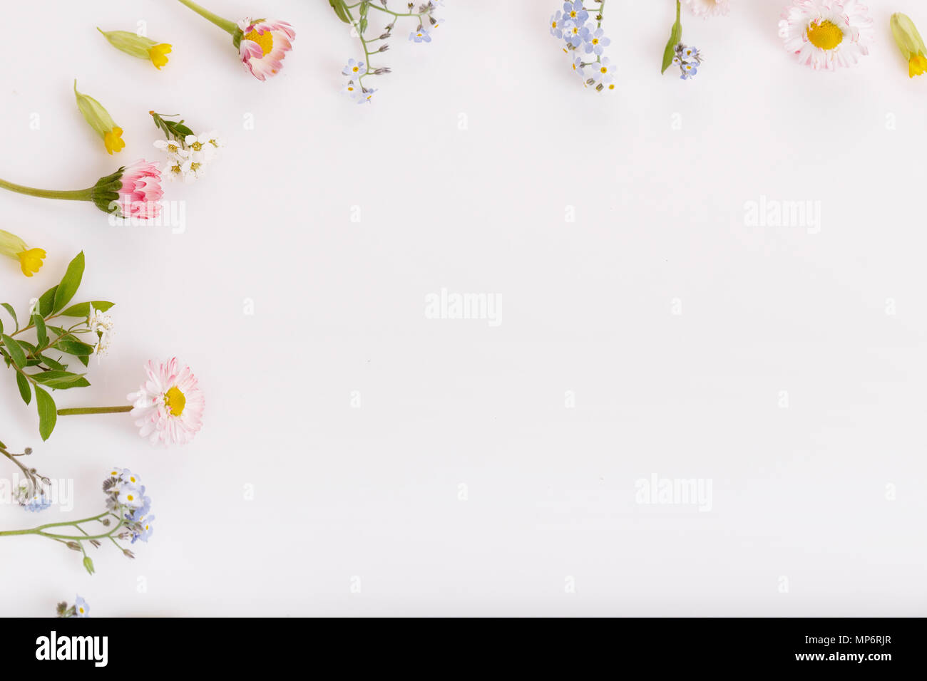 Pink Flowers Frame On White Background Stock Photo 185776383 Alamy