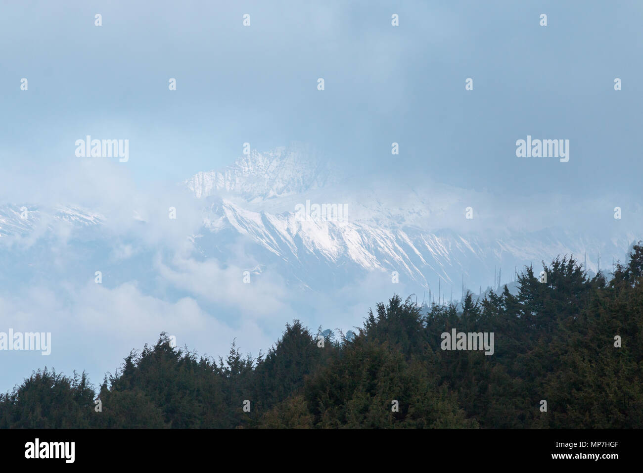 Snow capped high altitude mountains, viewed from the Bumdra trek in Bhutan -a popular destination for tourists. - Stock Image