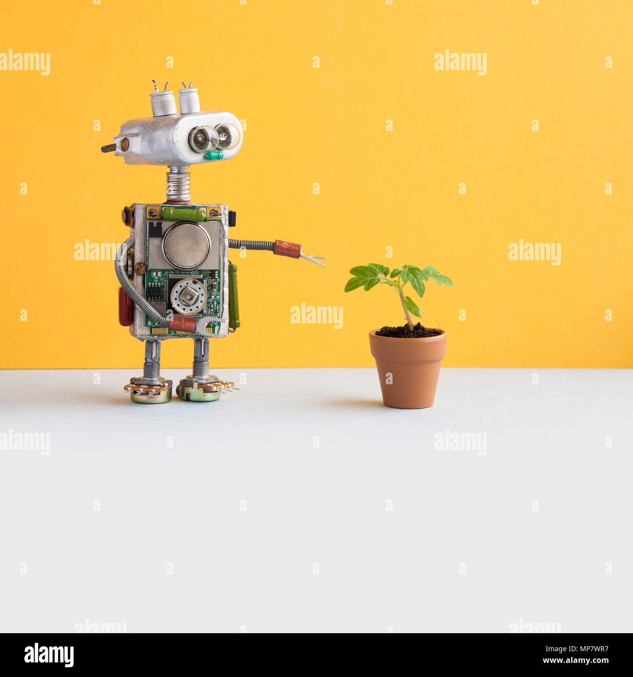 Biotechnology concept. Robot researcher points his hand at the green sprout in a clay pot. Yellow wall, white floor background. Copy space - Stock Image