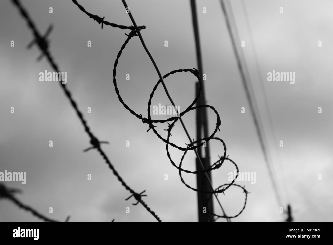 The sky behind barbwire. Black and white. - Stock Image
