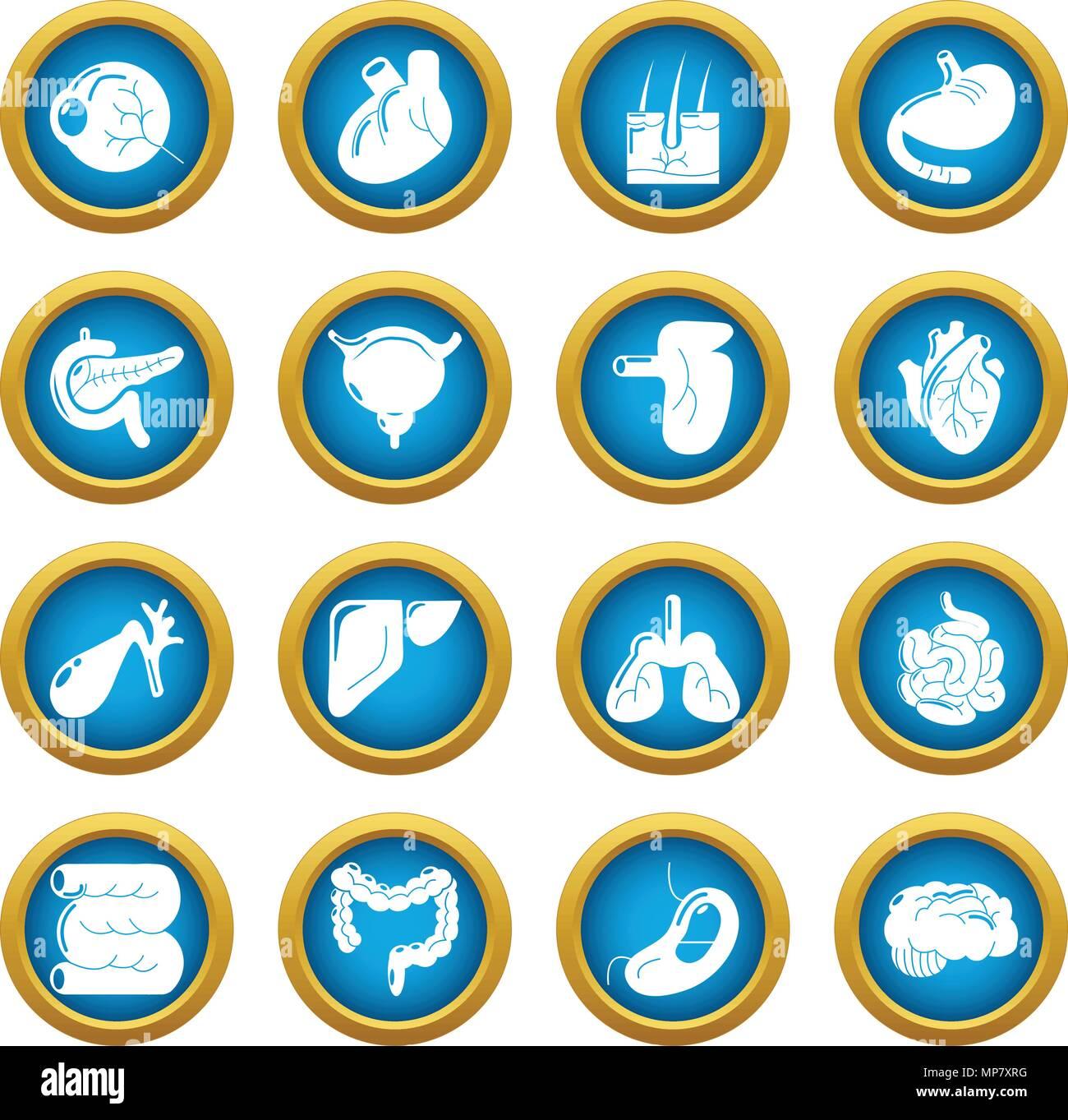 Internal human organs icons set, simple style - Stock Image