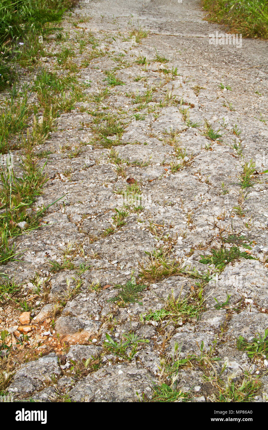 Bad road conditions: a bumpy, sagged road surface with grass growing in cracks and potholes - Stock Image