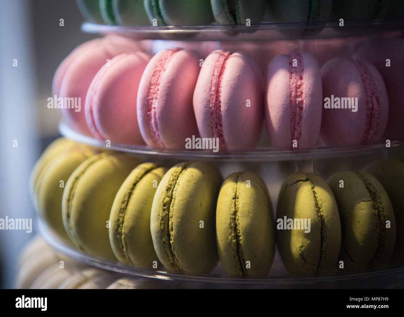 Fresh colourful delicious macarons round sweet biscuits on a plate - Stock Image