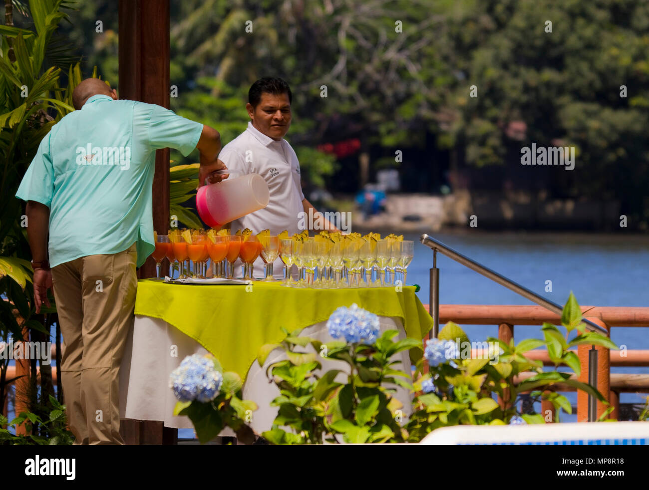 tropical drinks - welcome - Stock Image