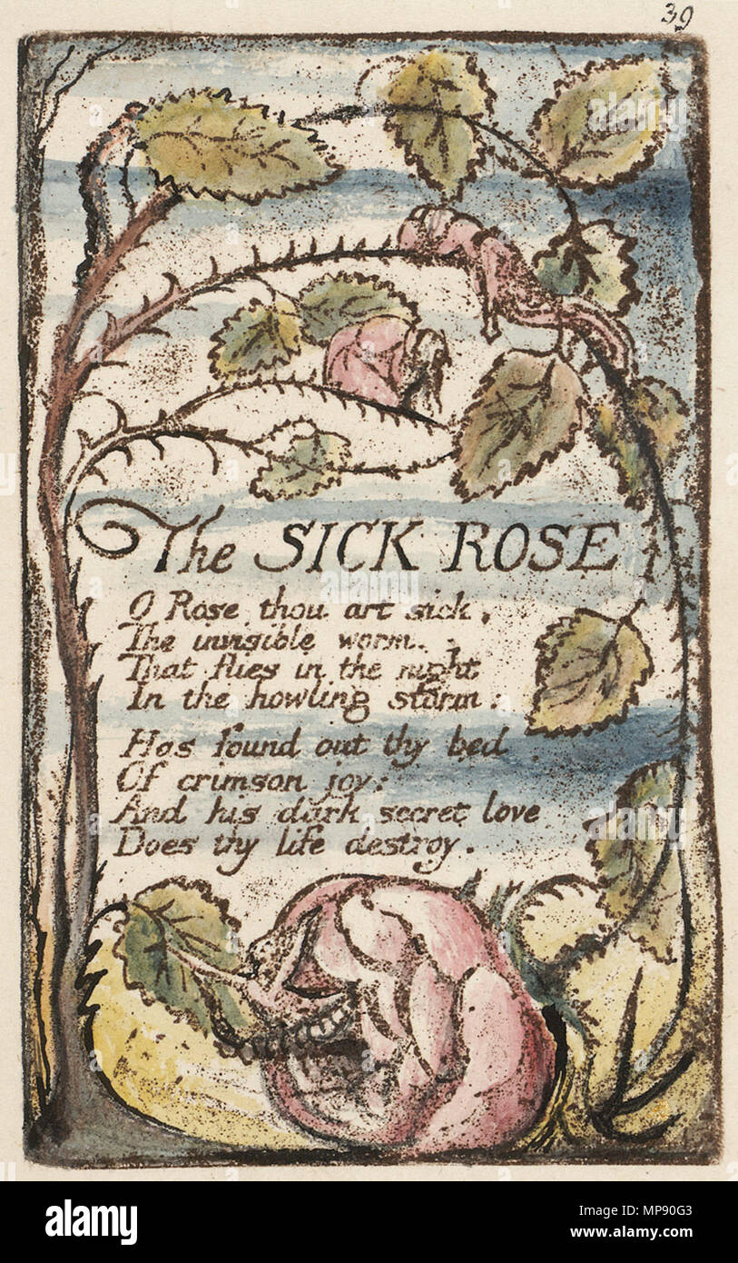 an examination of the poem the sick rose by william black as the characteristics of the 19th century William blake (1757-1827) a selective list of online literary criticism for the nineteenth-century english romantic poet and artist william blake, with links to reliable biographical and introductory material and signed, peer-reviewed, and scholarly literary criticism.