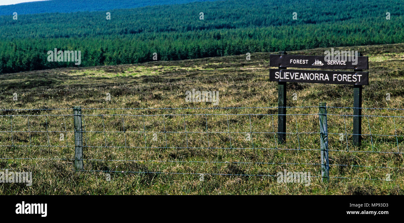 Slieveanorra Moor (Forest Nature Reserve), Ballymena, Northern Ireland,  UK, GB. - Stock Image
