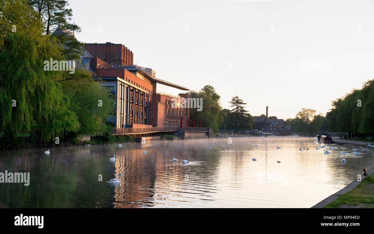 Royal Shakespeare Theatre reflecting in the river avon at sunnrise. Stratford Upon Avon, Warwickshire, England - Stock Image