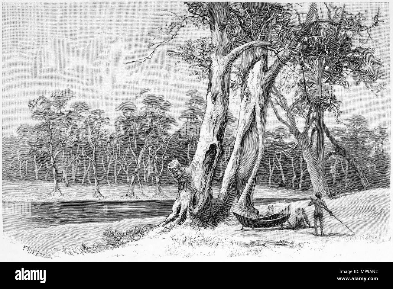Engraving of Aborigines making a bark canoe, Australia. From the Picturesque Atlas of Australasia Vol 3, 1886 - Stock Image