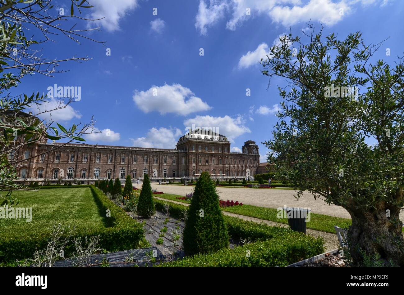 Venaria reale, Piedmont region, Italy. June 2017. Tourists explore the magnificent park of the palace. Tree-lined avenues, lawn, olive trees, flowers - Stock Image
