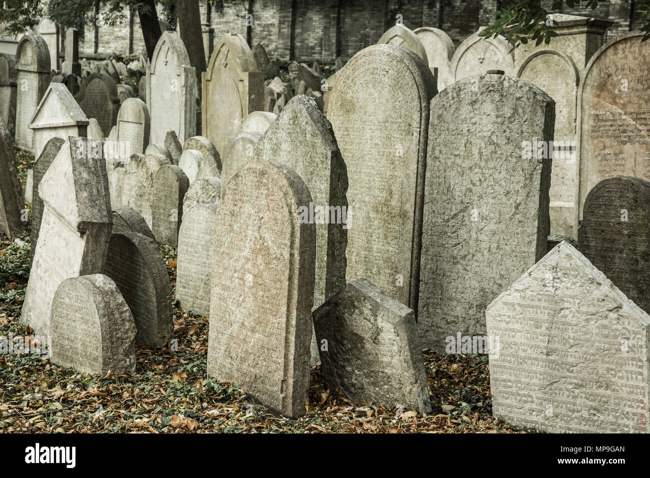 Old abandoned Jewish cemetery. Historical, halloween, sightseeing concept. - Stock Image