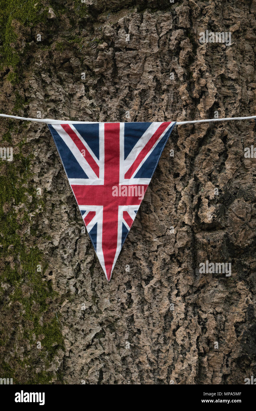 Union Jack bunting against tree - Stock Image