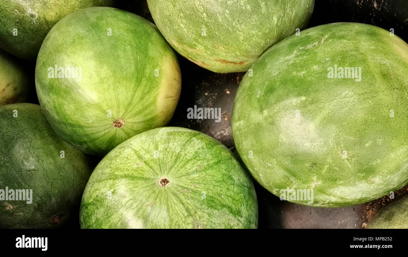 Group of watermelons - Stock Image