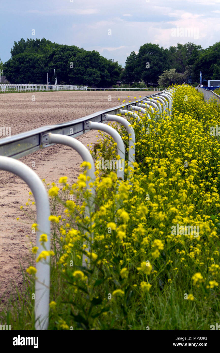 Horse race straight track with fencing. - Stock Image