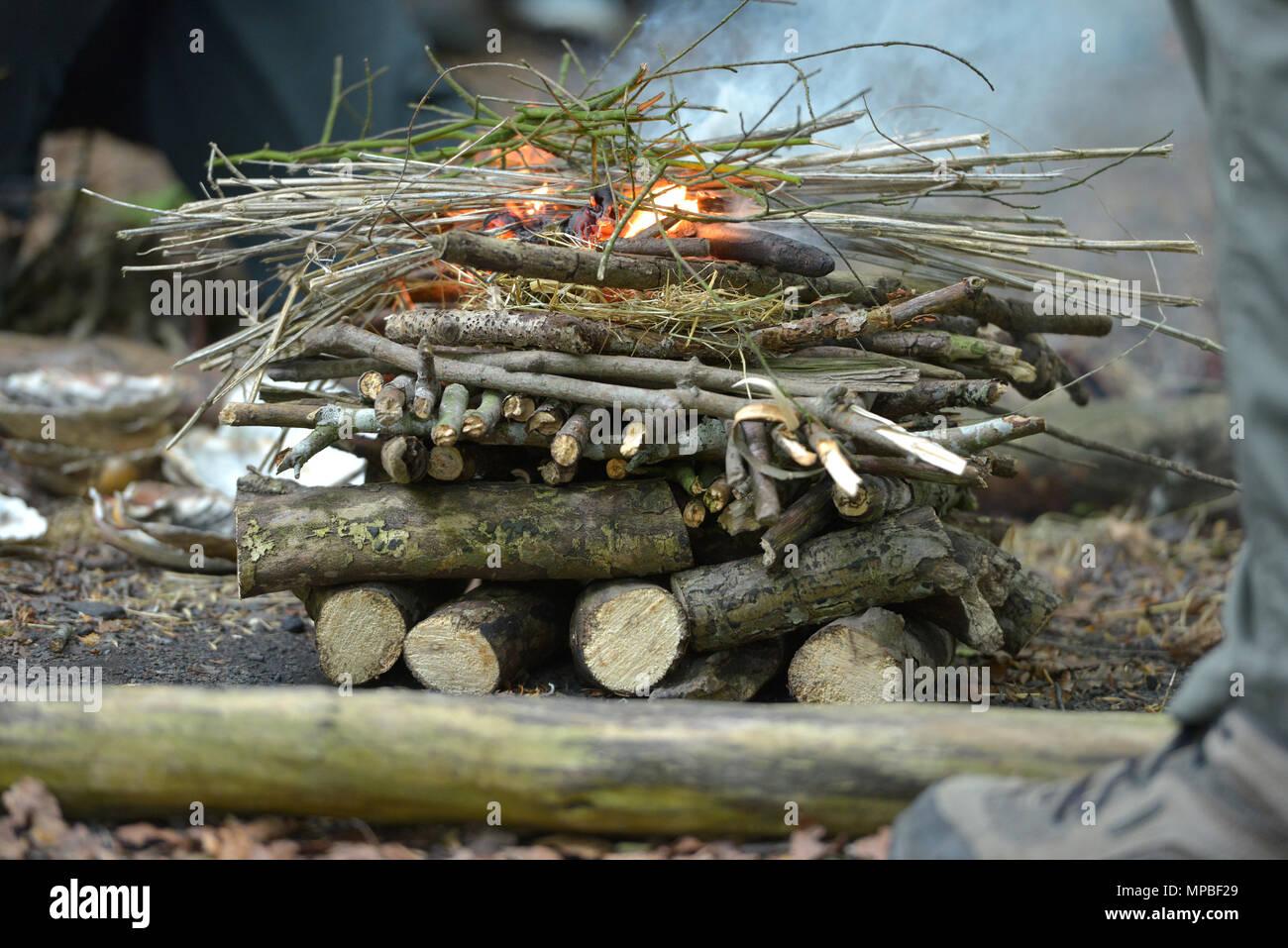 Campfire starting to burn. - Stock Image