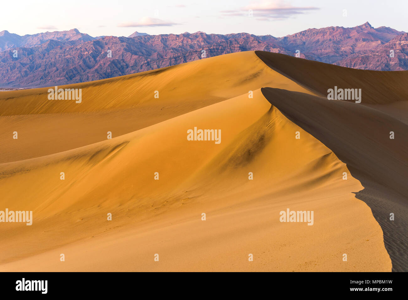 Spring Comes To Dunes >> Sunset Sand Dunes A Spring Sunset View Of Rolling Mesquite Flat