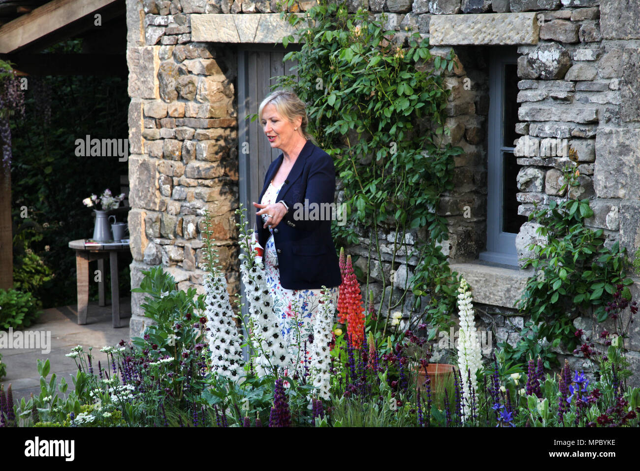 Chelsea, London, UK. 21st May, 2018. Chelsea, London, UK. 21st May 2018. Carol Kirkwood presenting the Live Weather forecast on the morning of 21st May 2018 from Welcome to Yorkshire's Garden at Chelsea Flower Show Credit: Jenny Lilly/Alamy Live News - Stock Image