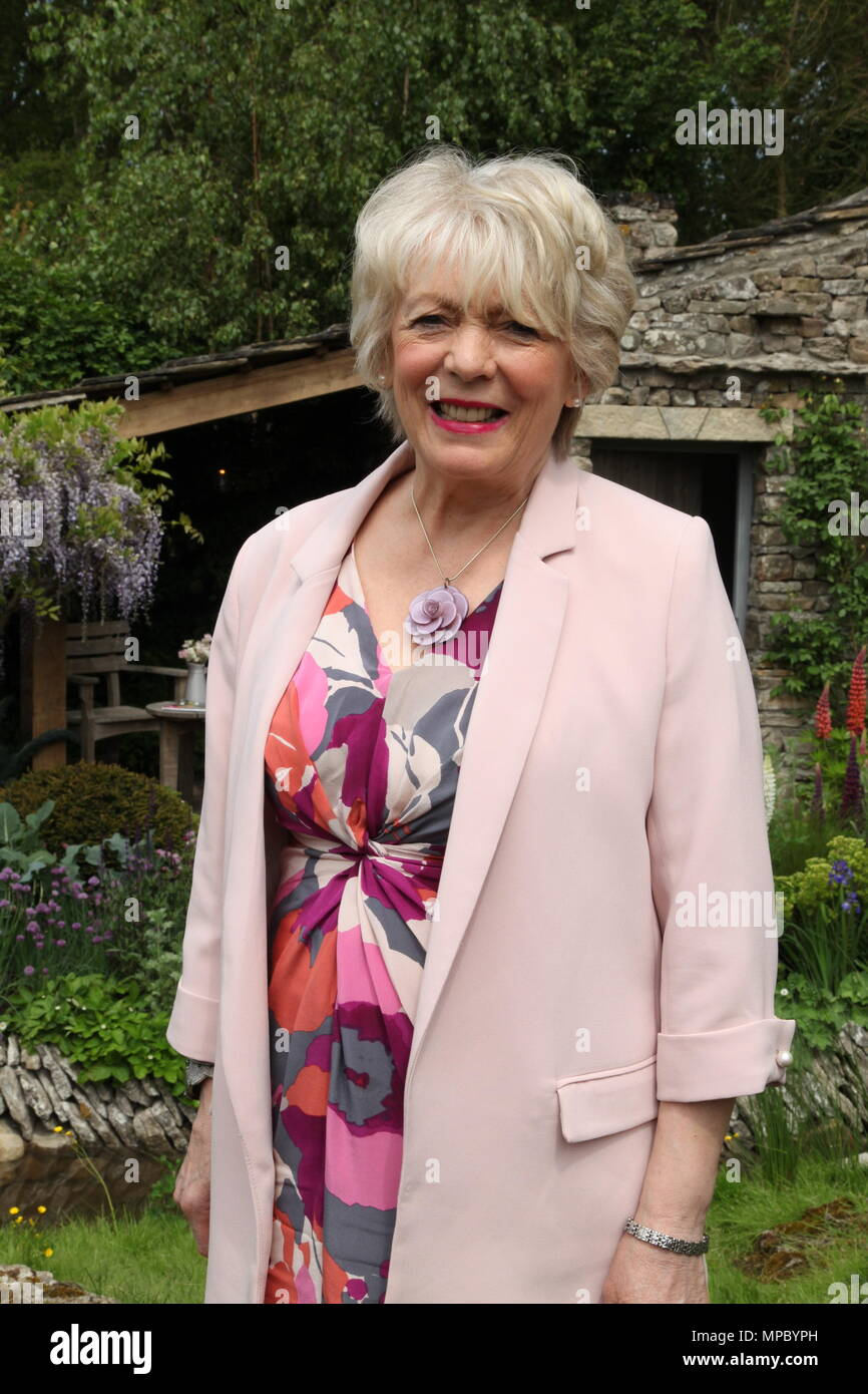 Chelsea, London, UK. 21st May, 2018. Chelsea, London, UK. 21st May 2018. Alison Steadman on the Welcome to Yorkshire garden at Chelsea Flower Show 2018, designed by Mark Gregory for Landformconsultants.co.uk Credit: Jenny Lilly/Alamy Live News - Stock Image