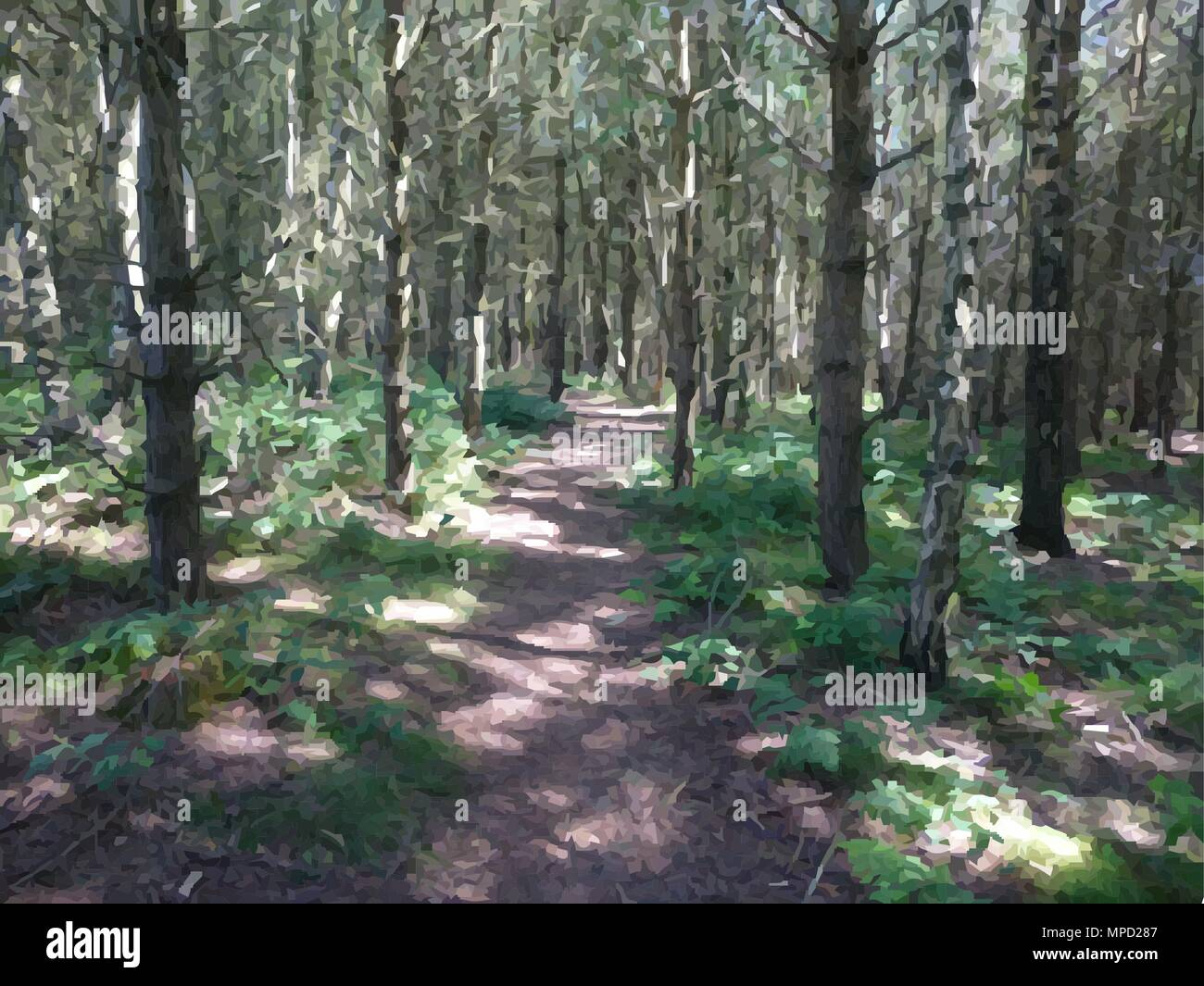 Sunny Woodland Path Stock Vector