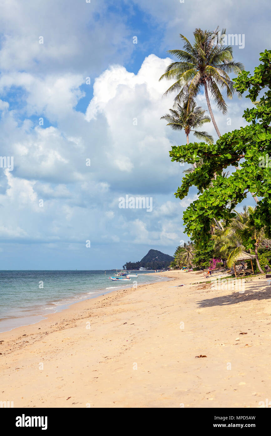 Bang Po Beach in Koh Samui, Thailand - Stock Image
