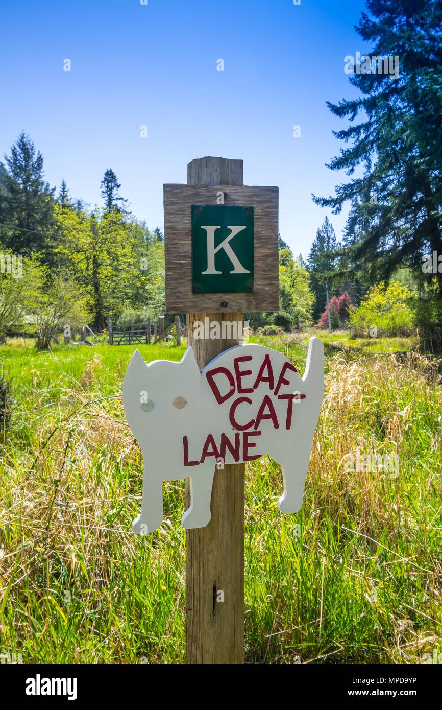 'Deaf Cat Lane' (warning sign), Hornby Island, BC, Canada. - Stock Image