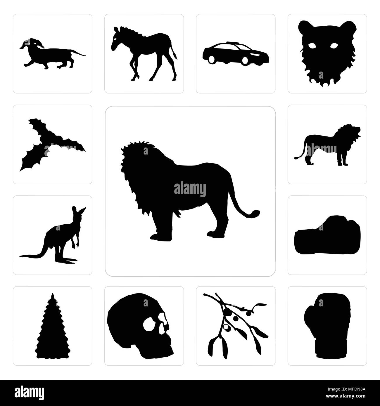 Set Of 13 Simple Editable Icons Such As Lion Outline Images On White Background Boxing Glove Mistletoe Background Can Be Used For Mobile Web Ui Stock Vector Image Art Alamy Click the sitting lion outline coloring pages to view printable version or color it online (compatible with ipad and android tablets). alamy