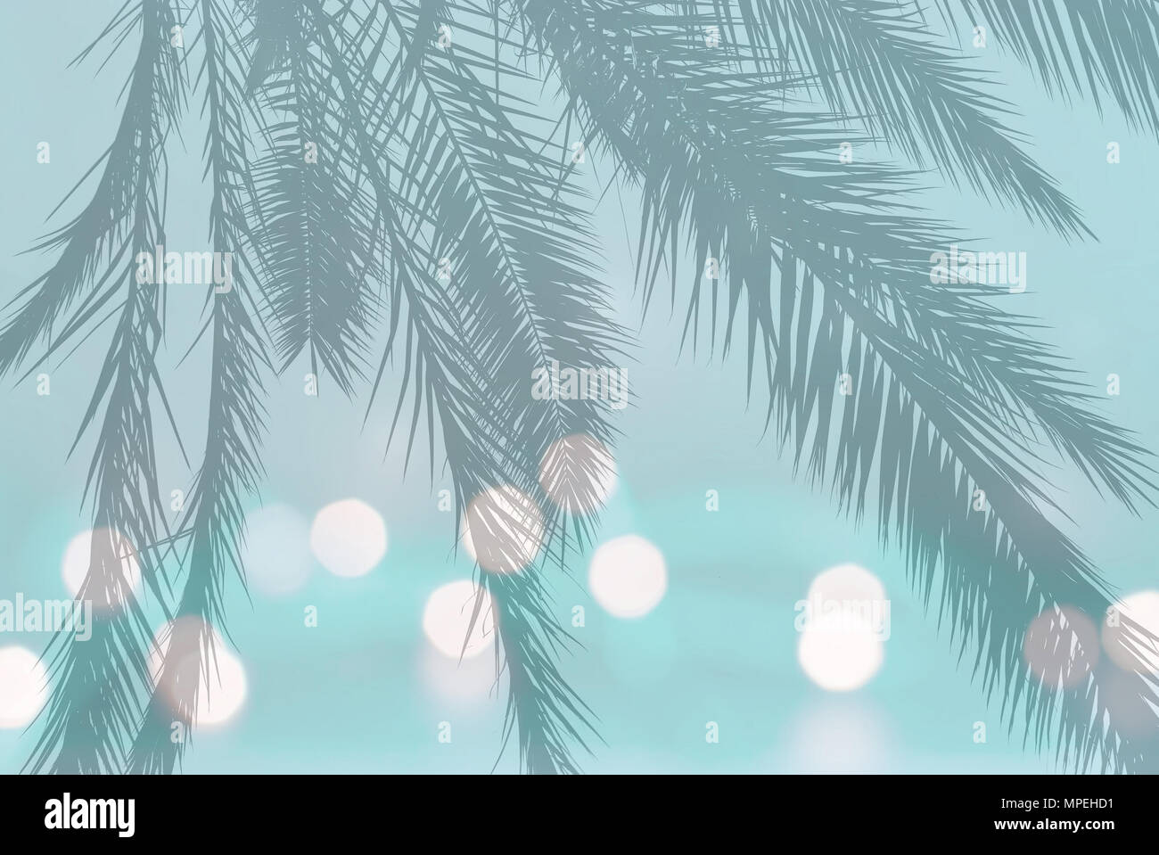 Palm leaf silhouette on festive blurry lights on soft teal turquoise vintage green background with copy space - Stock Image