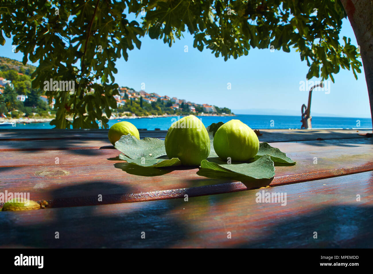 Fig on a table beneath a tree and the Croatian coast and Adriatic sea in the background. Panorama. - Stock Image
