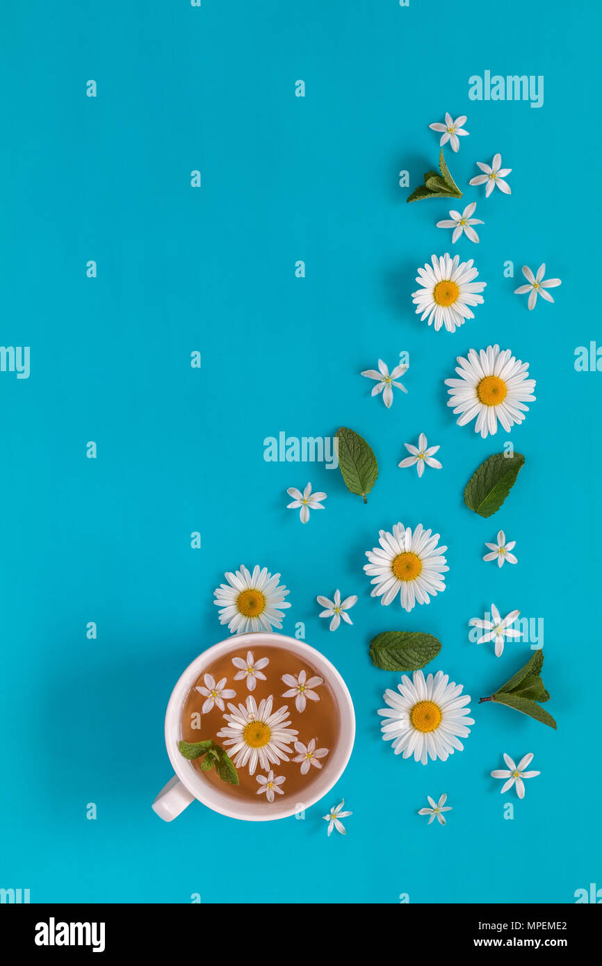 Cup of tea with fresh flowers blossom bouquets on blue surface. Flat lay, top view food floral background. - Stock Image