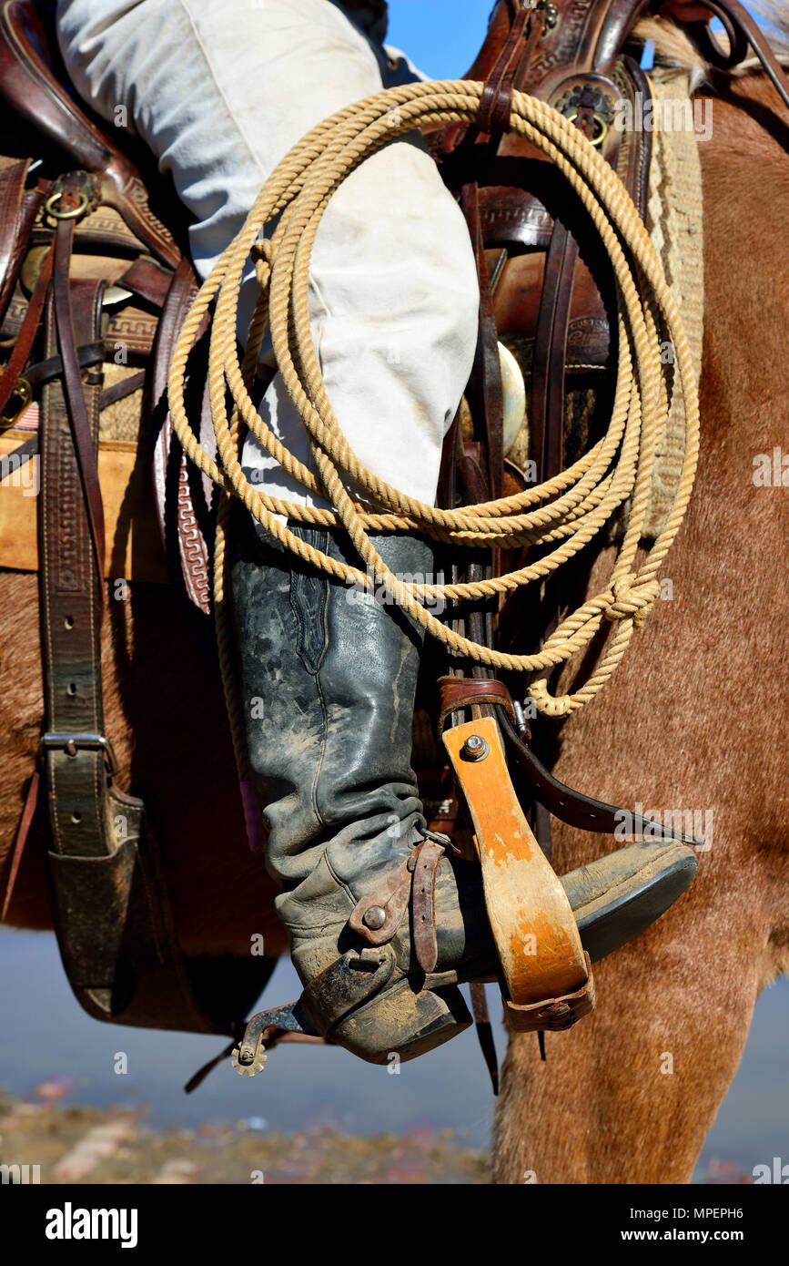 Cowboy in saddle on horse, with lasso, western boots, spurs, Stockyards National Historic District, Fort Worth, Texas, USA - Stock Image