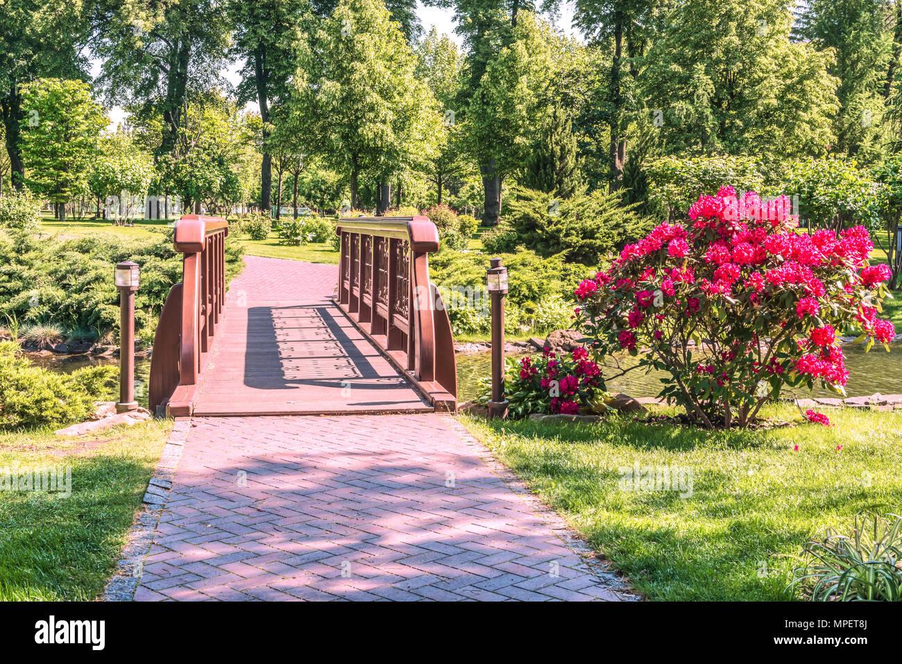 A small bridge across the lake in Mezhigirya Park near Kiev  The