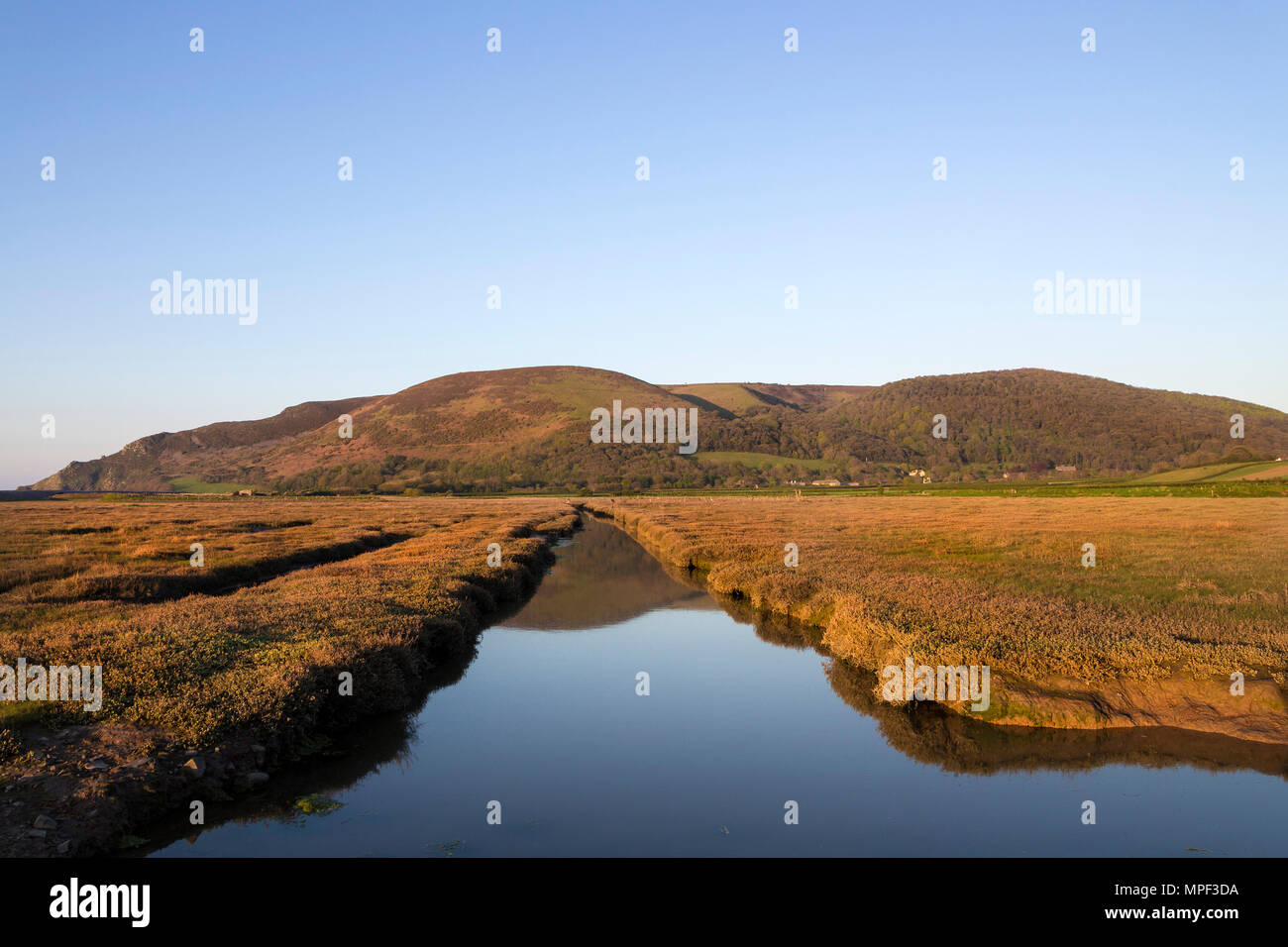 Bossington Hill Viewed From Porlock Marsh on the South West Coast Path, Exmoor National Park, Porlock, Somerset, UK Stock Photo