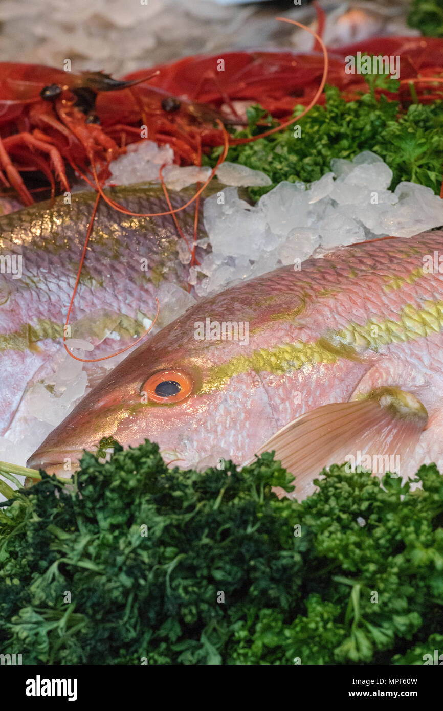 A selection of fresh fish or freshly caught seafoods for sale on a fishmongers stall on borough market in central london. Fresh fish from trawlers. - Stock Image