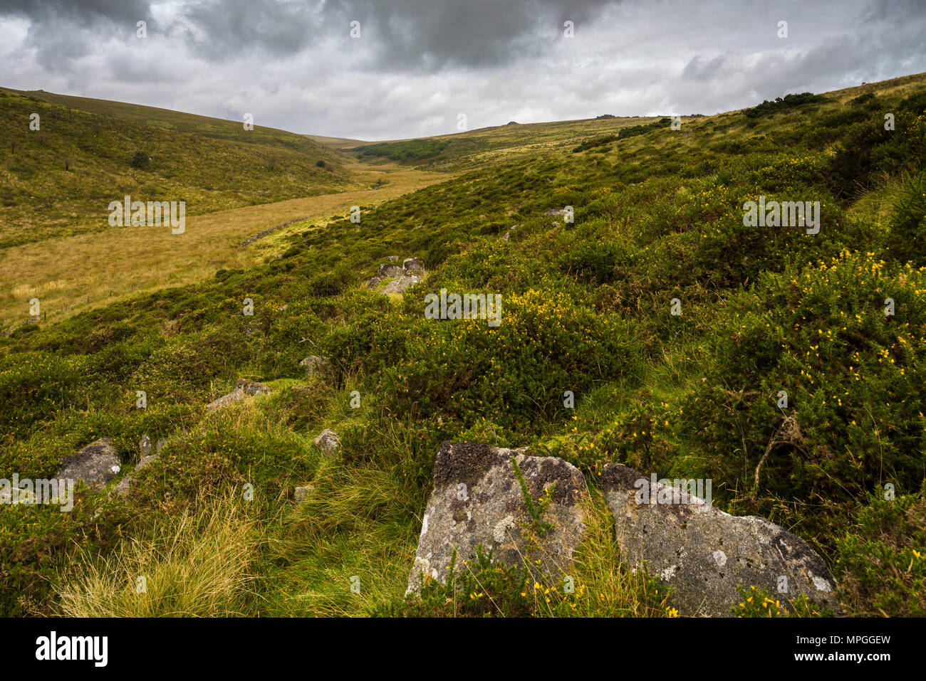 The Dart Valley north of Two Bridges leading to Wistmans Wood, a Site of Special Scientific Interest in Dartmoor National Park, Devon, England. - Stock Image