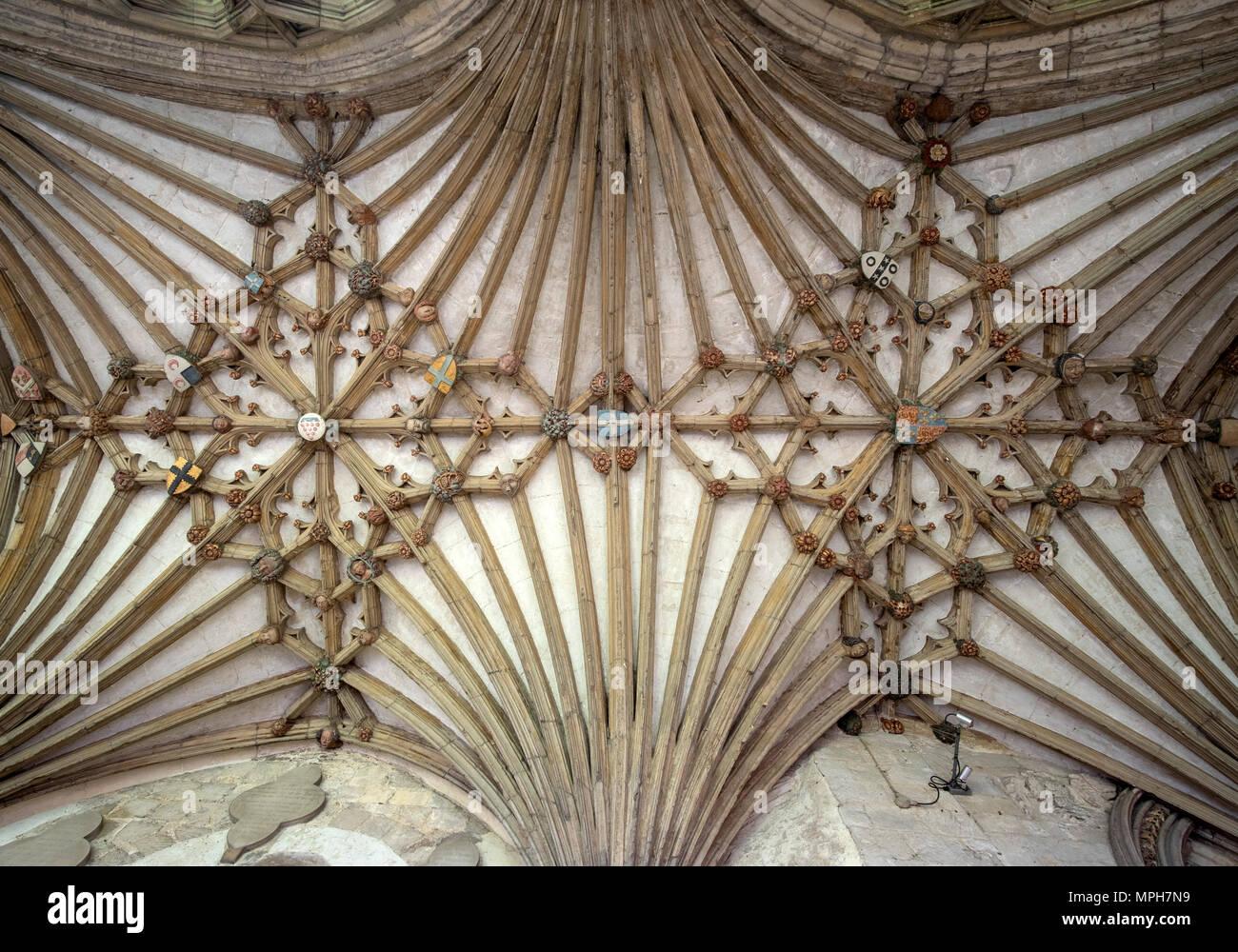 Canterbury, Cathedral, Gewölbe im Kreuzgang - Stock Image