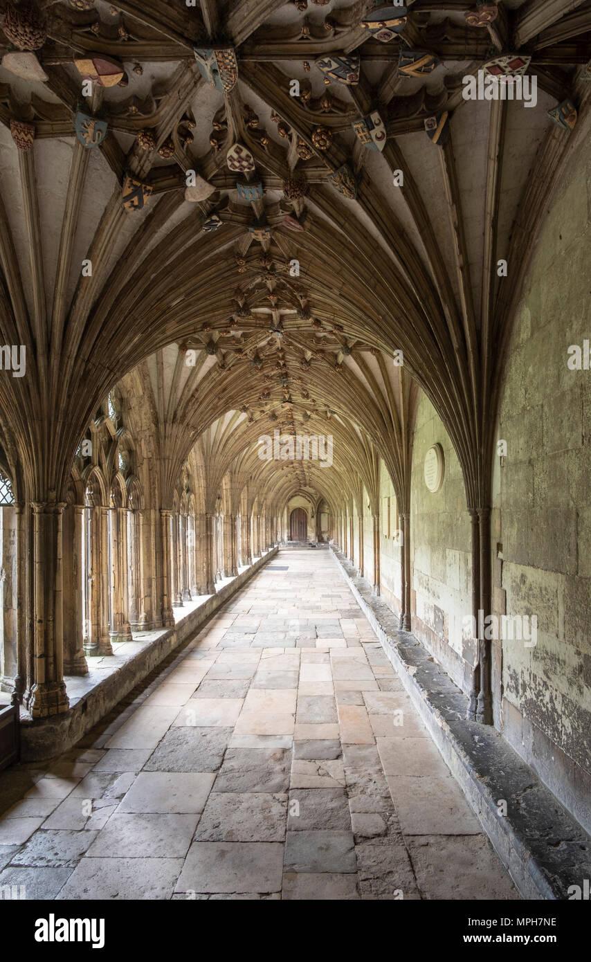Canterbury, Cathedral, Kreuzgang - Stock Image