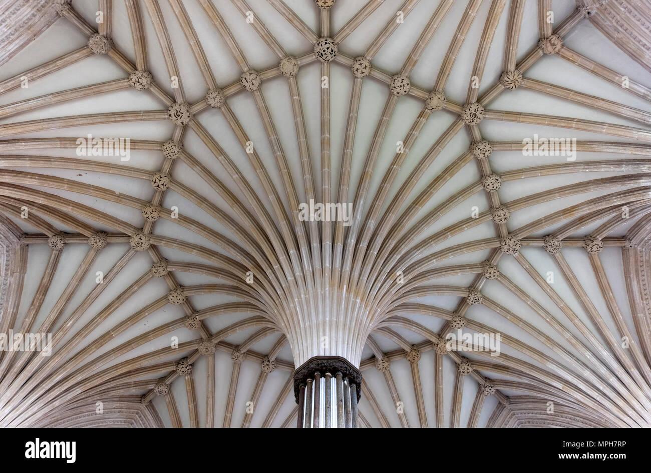 Wells, Cathedral, Kapitelsaal, Blick ins Gewölbe - Stock Image