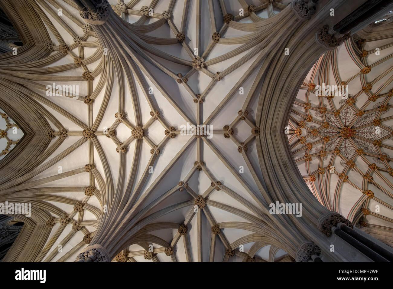 Wells, Cathedral, Gewölbe der Marienkapelle (Lady Chapel, rechts) und Retrochor - Stock Image